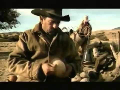 Rough cowboys herding cats in the prairie YouTube