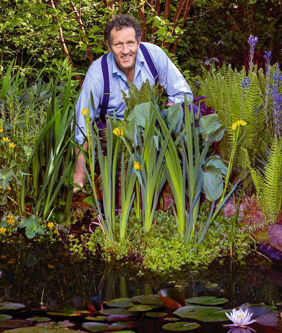 Monty Don shows how to create a wildlife pond for your garden or patio is part of Ponds for small gardens, Pond landscaping, Pond plants, Garden pond, Ponds backyard, Bog garden - British gardening expert Monty Don shared advice for designing a garden that welcomes wildlife  He believes gardens of all sizes can use water to attract a full range of creatures