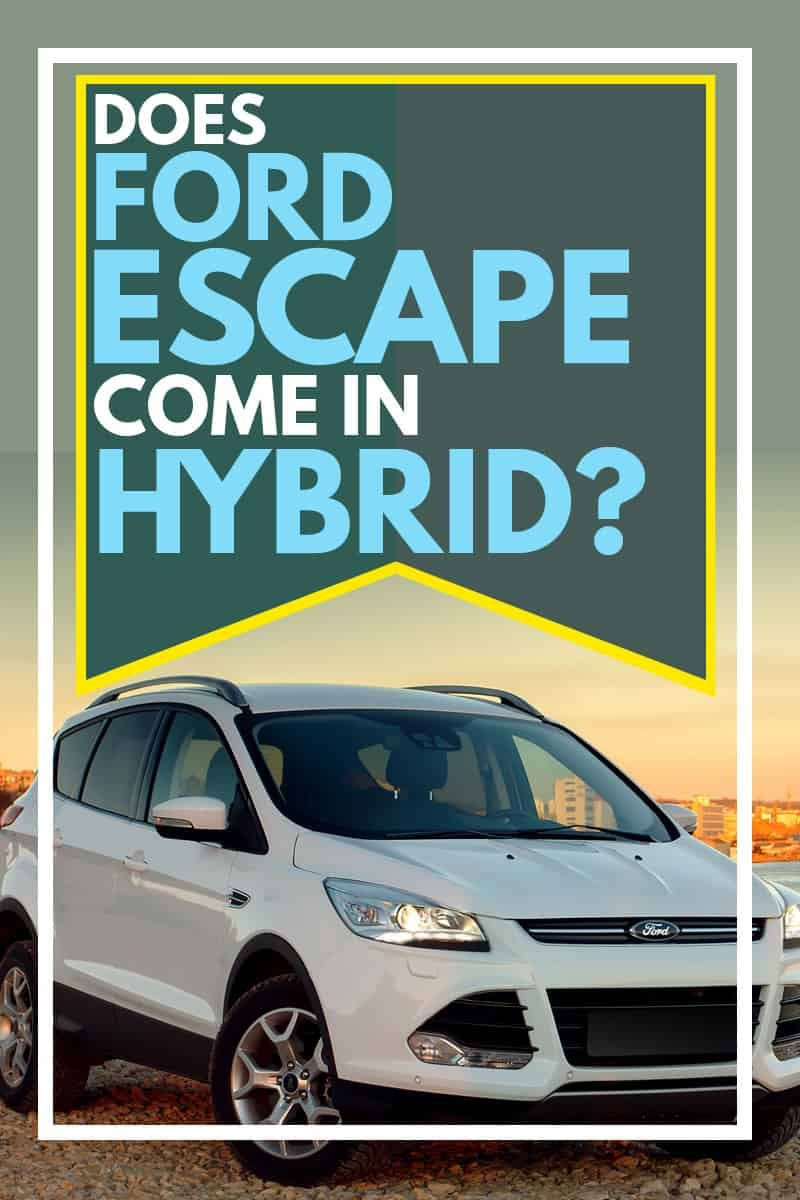 Does Ford Escape Come in Hybrid? Vehicle HQ in 2020