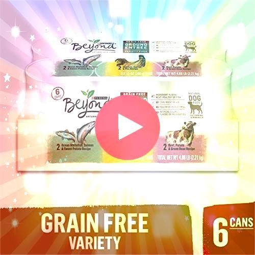 Beyond Grain Free Natural Pate Wet Dog Food Variety Pack Grain Free Ground Entree Cesar Savory Delights Wet Dog Food Rotisserie Chicken Filet Mignon Angus Beef and Ham  E...