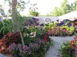 Driftwood Garden Center Naples Fl Lots Of House Plants Good Variety More Expensive