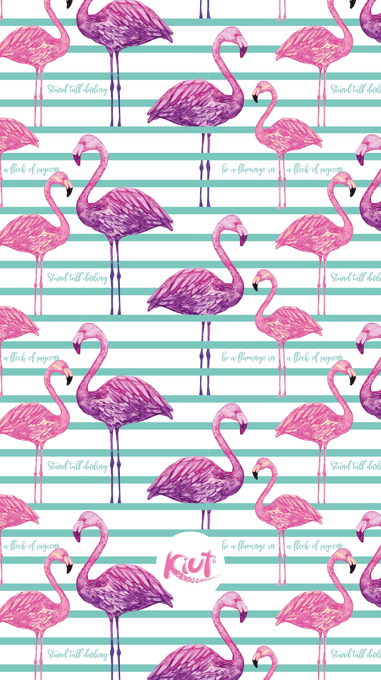 Koleksi Flamingo Wallpaper Pernik Wallpaper