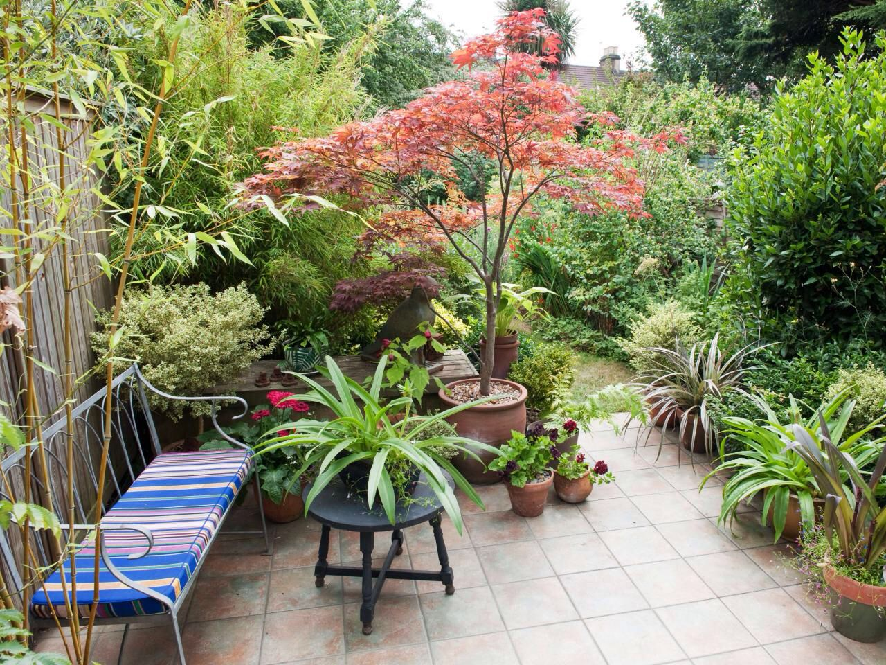 Small Backyard Container Garden With Trees Patio 640 x 480