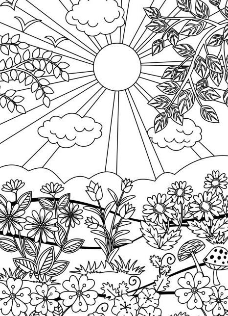 Twenty Coloring Pages for Grown-Ups | Ausmalbilder sommer ...