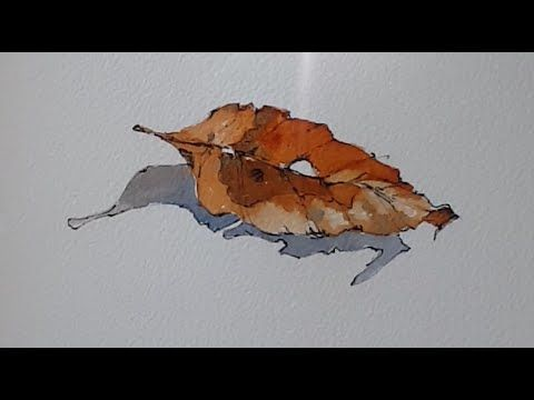 Line And Wash Painting Of A Leaf And Shadow Using Just 2 Colours