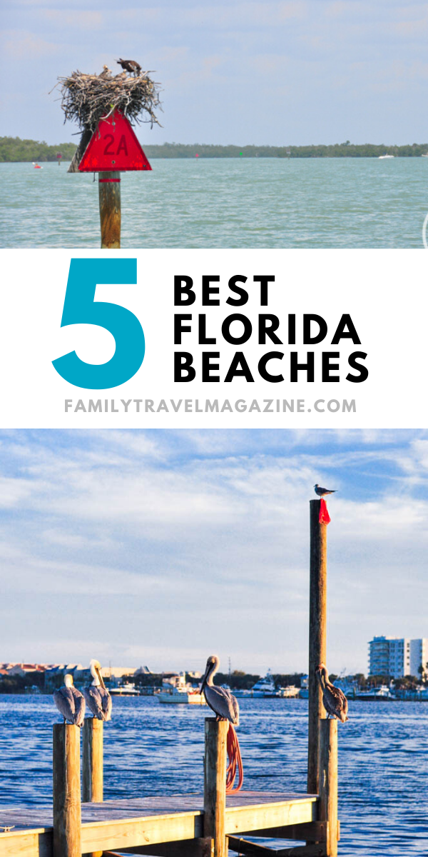 5 Best Beaches In Florida With Kids Best Beaches To Visit Florida Travel Best Beach In Florida