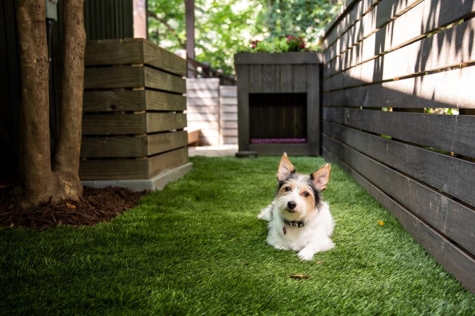 How to Build a Dog Run   HGTV in 2020   Backyard dog area ...