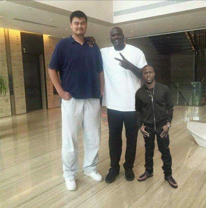 Yao Ming dating