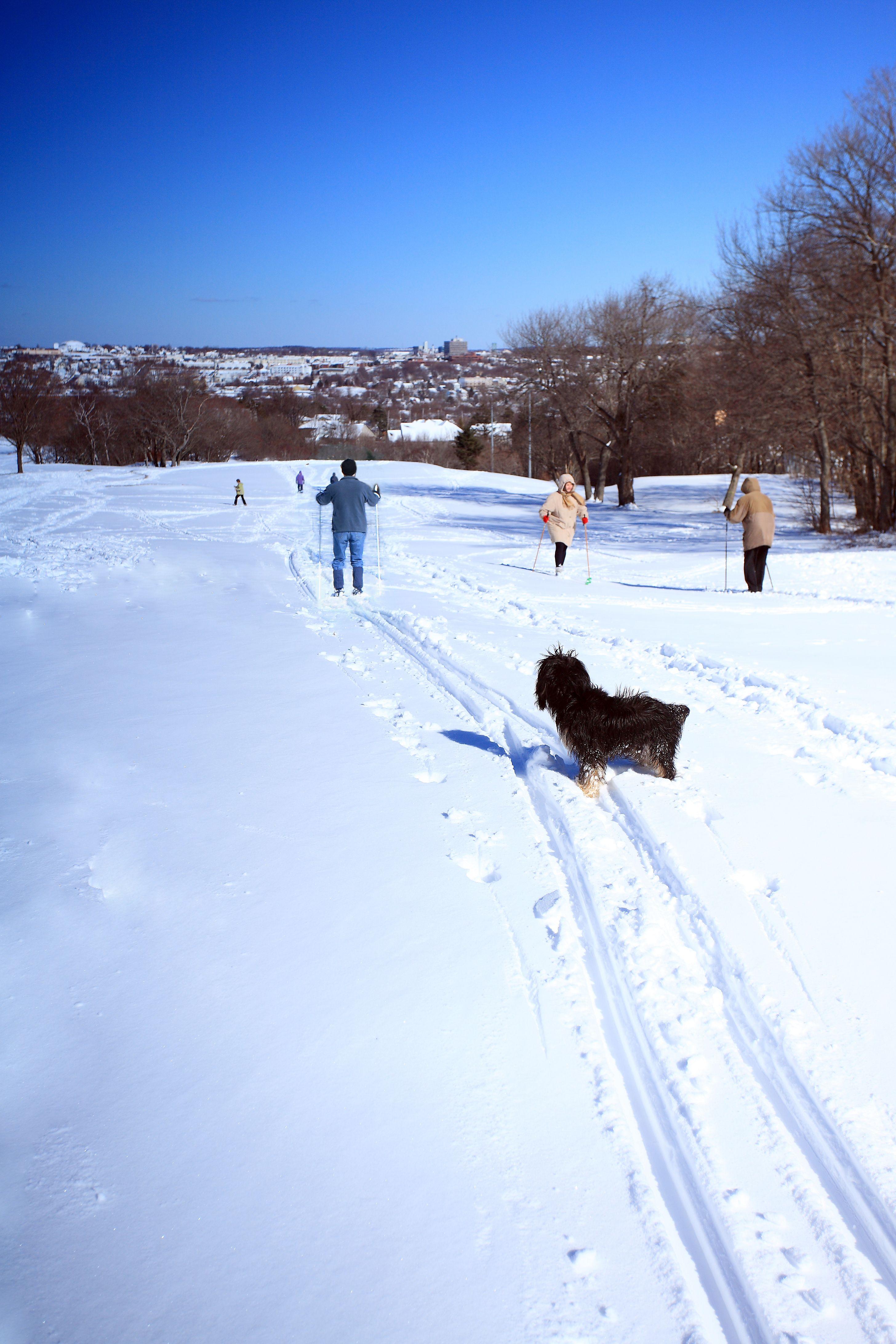 15+ Ashburn golf course halifax viral