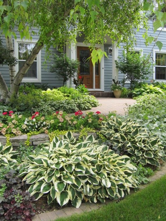 Hostas And Heuchera. Love The Curb Appeal.