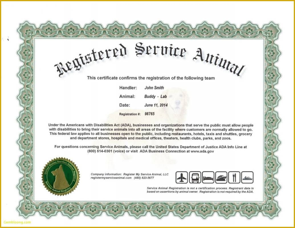 The Fascinating 6 Unique Free Printable Service Dog Id Card Template For The In Service Dog Certificate Tem Certificate Templates Id Card Template Service Dogs