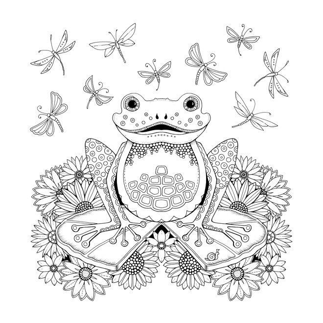 Frog Artist Johanna Basford Enchanted Forest Coloring