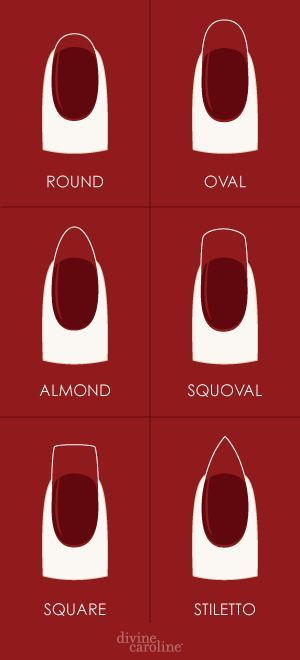 Isn't the round and oval the same exact     shape but ones longer than the other?