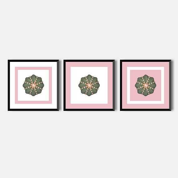 Set Of 3 Botanical Lifestyle Decor poster. Three poster 20 x 20 inch / 50x50 cm.  Decor your home, nursery or office in an affordable way! Print it and frame it - its really that easy!  Instant download, various sizes included. Note: This listing is a digital download only, no frame or physical product will be shipped.  If you need other size, contact me! I will send it to you at no extra cost.     ✭ ✭ ✭ PRINT IT & FRAME IT YOURSELF! ✭ ✭ ✭ Print Your Own Artwork - Find the perfect ar...