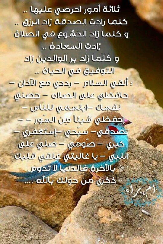 تابعونا قروبات تجمع المصممين قروب الموبايل Desgroup قروب الحاسوب Desgroup2 تابعونا في قنوا Pintrest Arabic Calligraphy Calligraphy