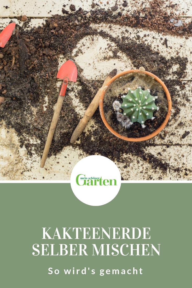 So Mischen Sie Ihre Eigene Kakteenerde Kakteen Garten Kaktus Pflanzen