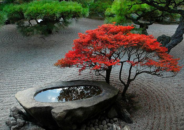 Photo of Zen Gardens & Asian Garden Ideas (68 images) #asiangarden Zen Gardens & Asian Ga…