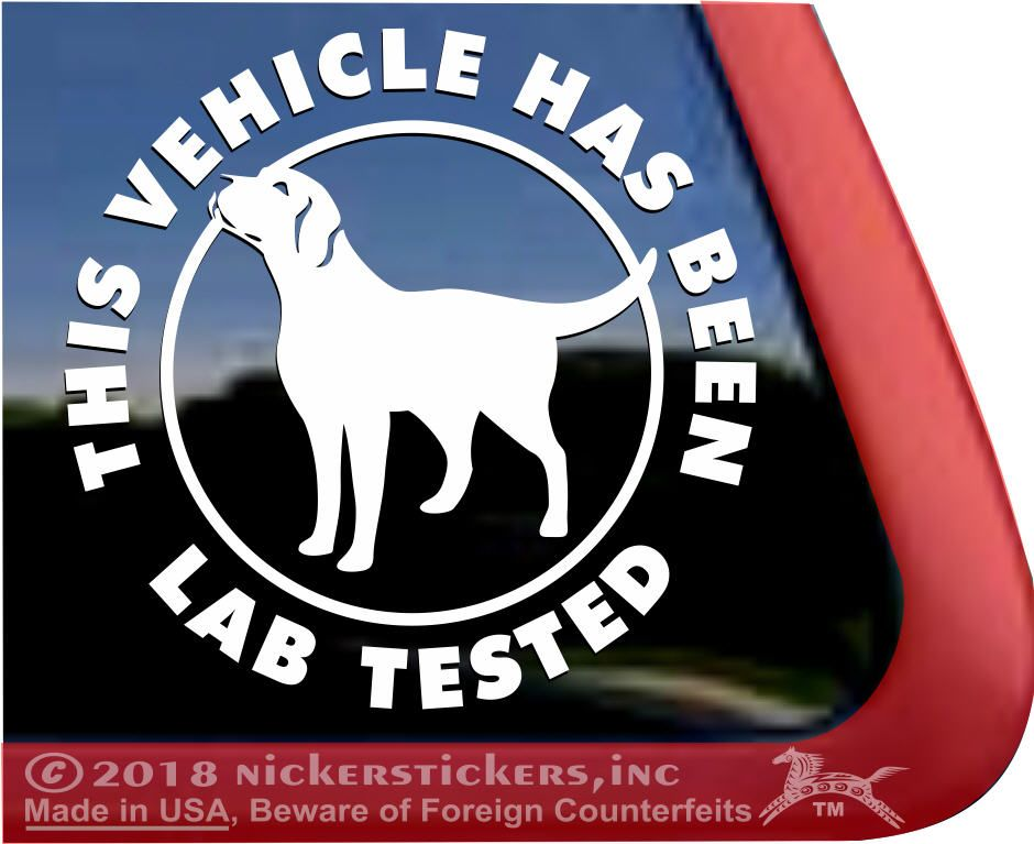 This Vehicle Has Been Lab Tested Vinyldecals Labradorretrievers Labradors Labs Nickerstickers Labrador Retriever Dog Dog Window Dog Decals
