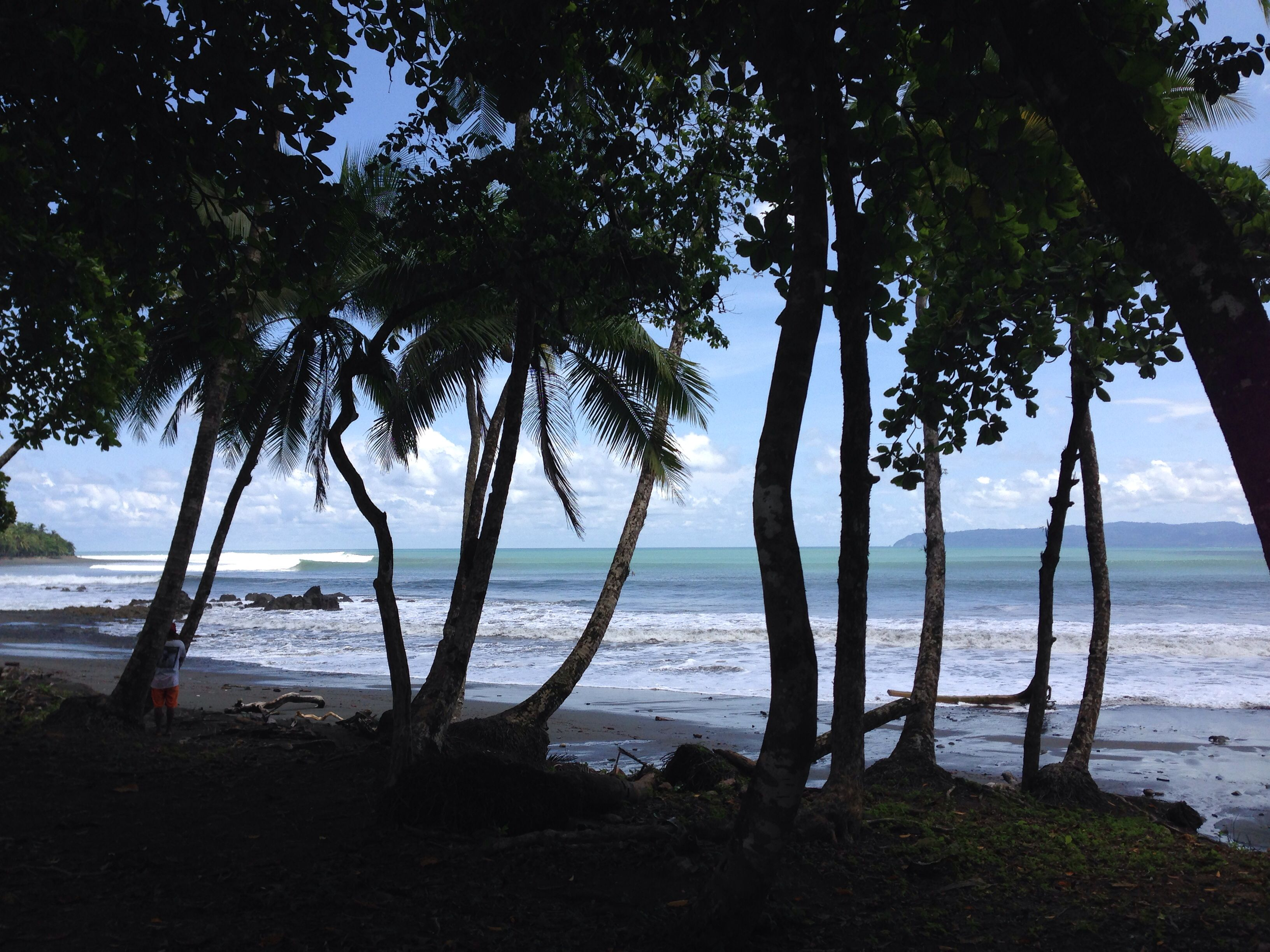 Surfer S Paradise Pavones
