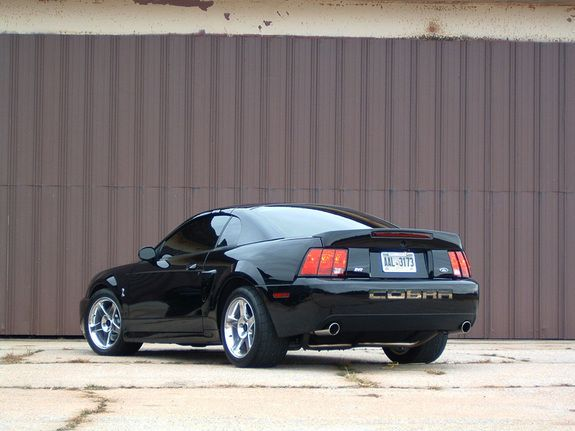 2004 Ford Mustang Svt Cobra Pictures Cargurus 2004 Ford Mustang Ford Mustang Mustang