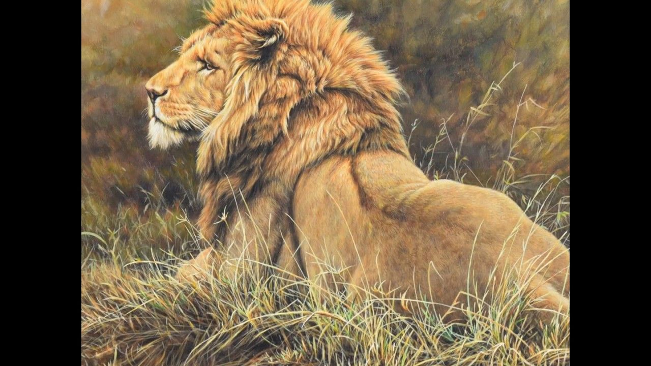 Big Cat Paintings by Alan M Hunt Cat painting, Big cats