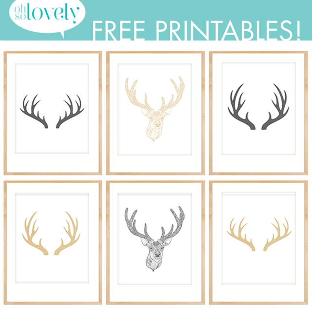 photo regarding Printable Deer Antlers named Do-it-yourself // OH DEER Artwork Prints + Cost-free Downloads Printables