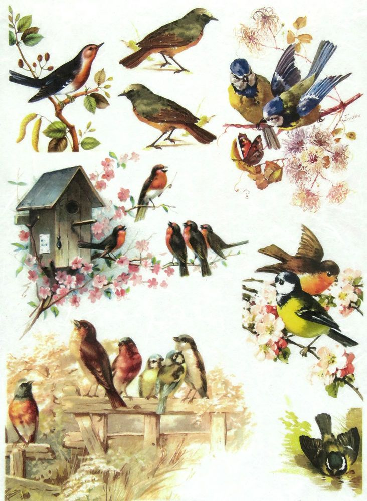 Rice paper for decoupage vintage animals