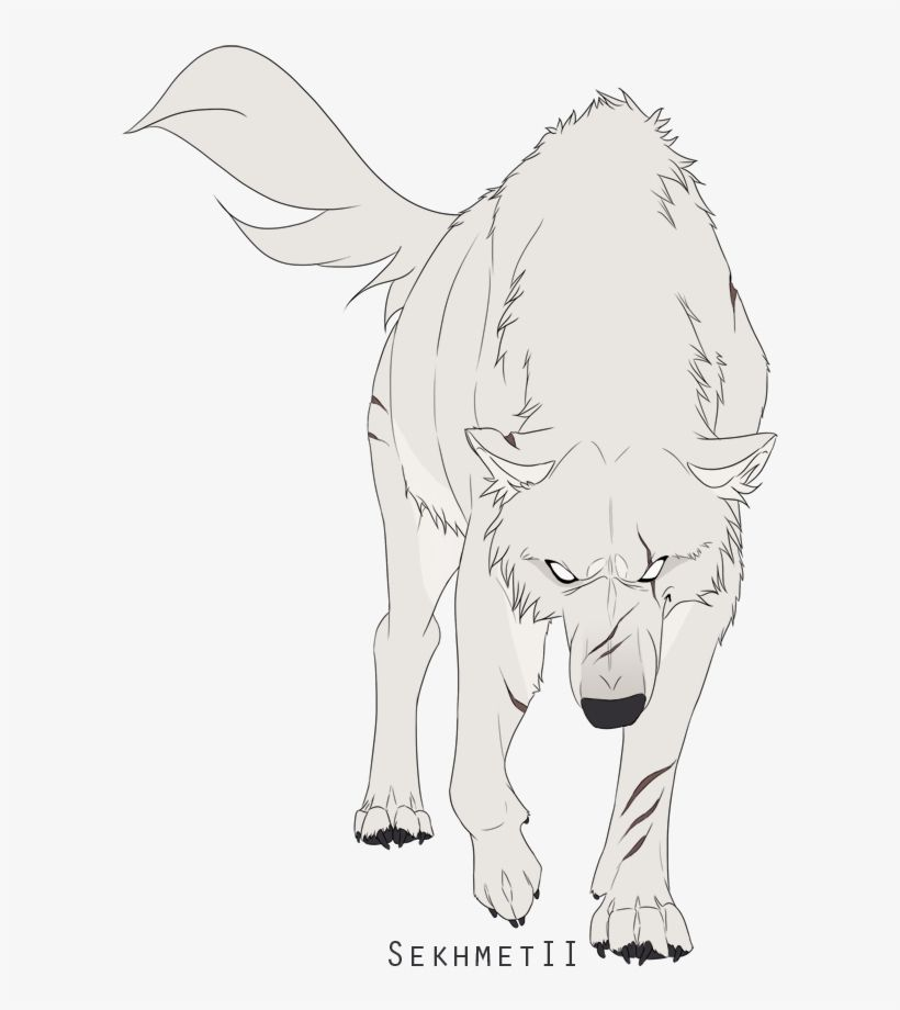 Download Wolves White Wolf White Wolf Drawing Anime Png Image For Free The 638x867 Transparent Png Image Cute Wolf Drawings Wolf Drawing Anime Wolf Girl