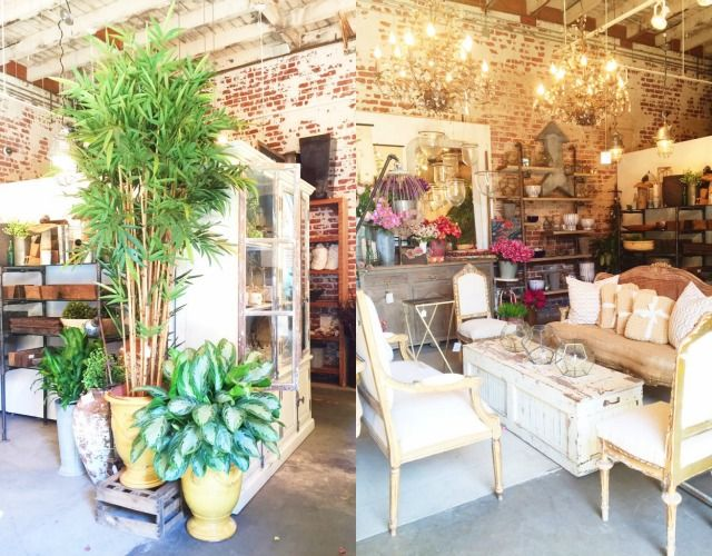 chic rolling greens nursery los angeles   Our Stores   Shop