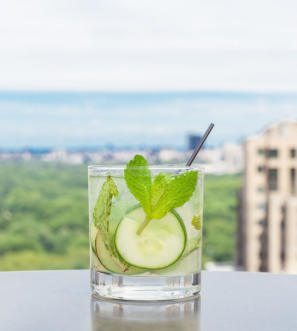 8 essential and delicious vodka cocktail recipes cups delish vodka cocktail recipes sisterspd