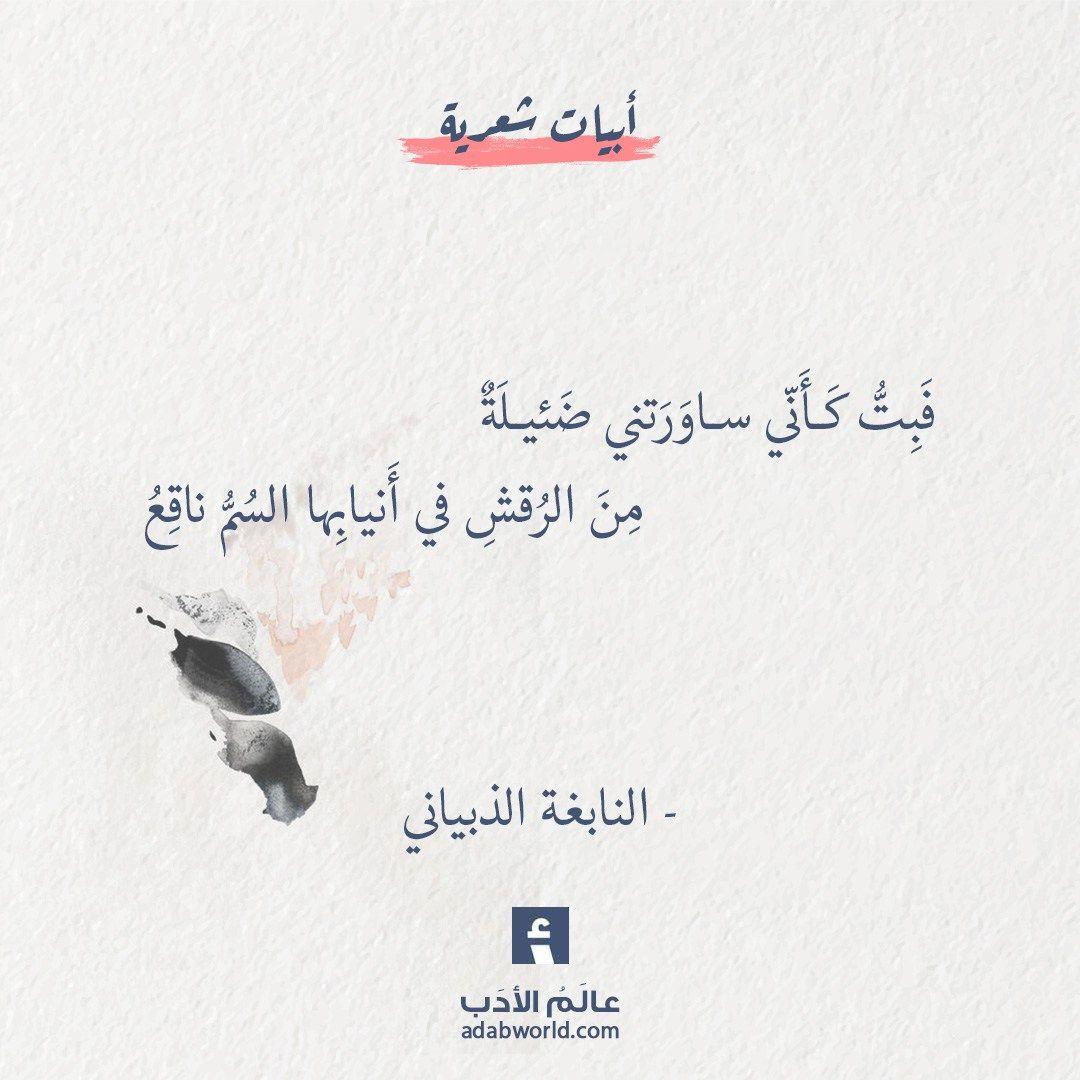 أبيات شعر عالم الأدب Arabic Poetry Arabic Quotes Poet Quotes