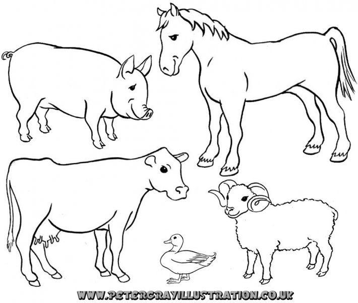 Farm Animals Farm Animals Clipart Black And White Animal Coloring Pages Animal Clipart Farm Animals