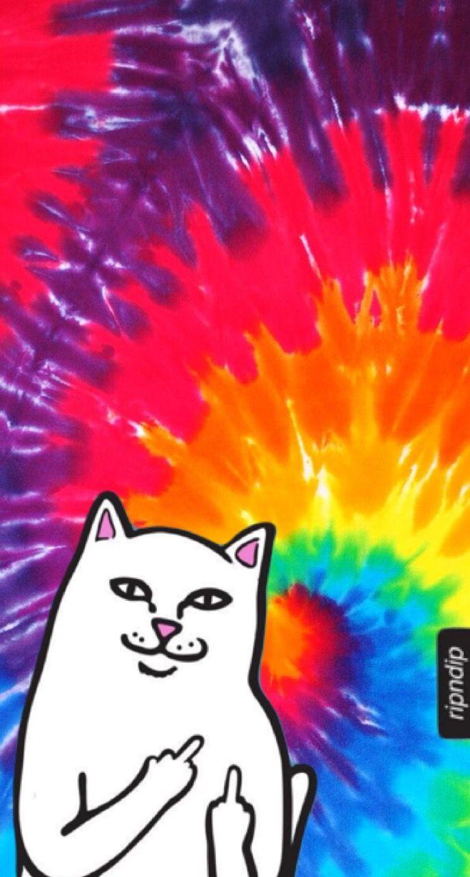 Wallpaper MiddleFinger Cat Ripndip wallpaper
