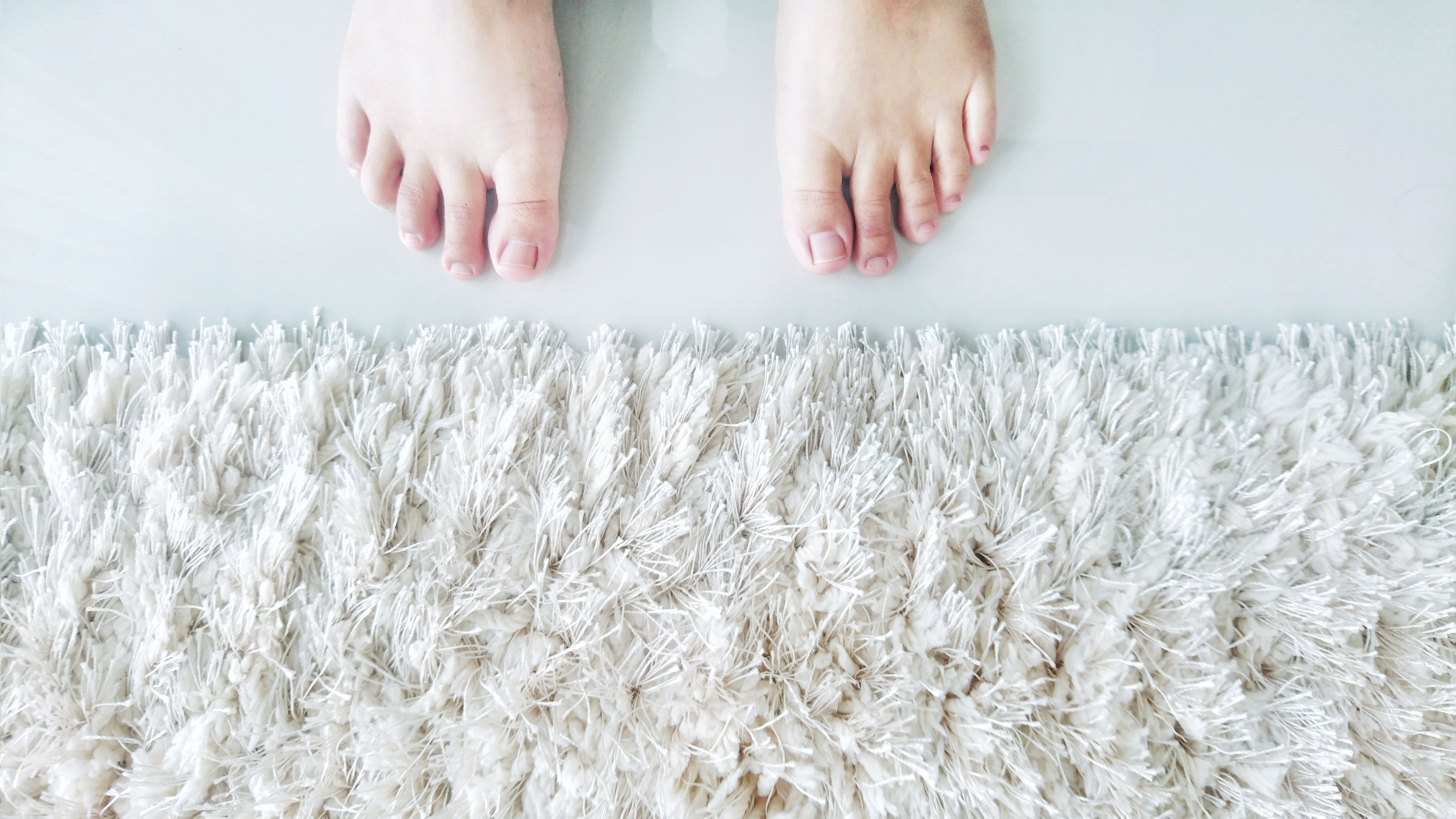 How To Get Vomit Stain Out Of Wool Carpet Feels Free To Follow Us In 2020 With Images Clean Wool Rug Wool Carpet Wool Rug