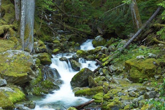 pequenas-cascadas-del-arroyo_1426-316.jpg (626×417)
