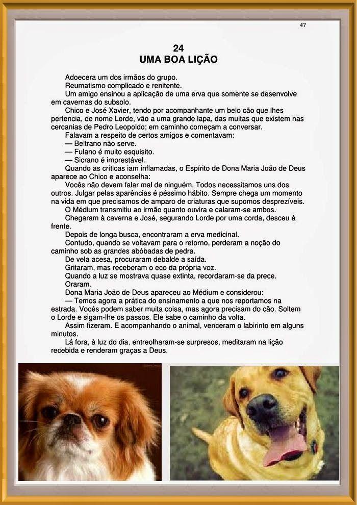 BIOGRAFIAS E COISAS .COM: 06 LINDAS HISTORIAS DE CHICO XAVIER