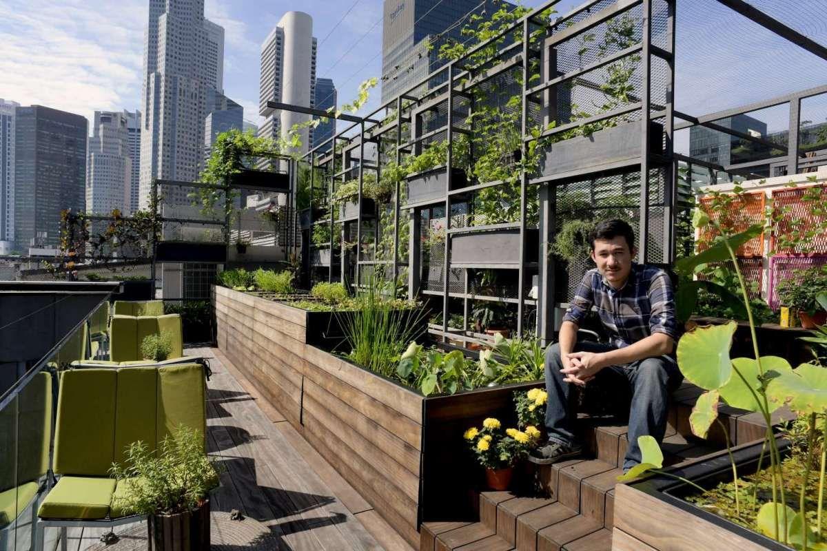 rooftop office space - חיפוש ב-Google   Urban garden ...