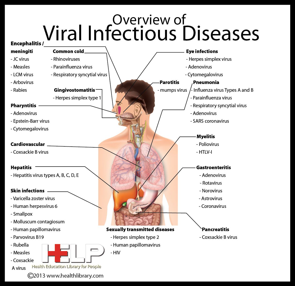 Viral Infectious Diseases