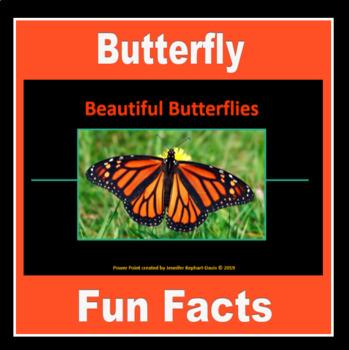 Colorful Butterflies By Art Kids Teachers Pay Teachers Colorful Butterflies Art Room Art For Kids