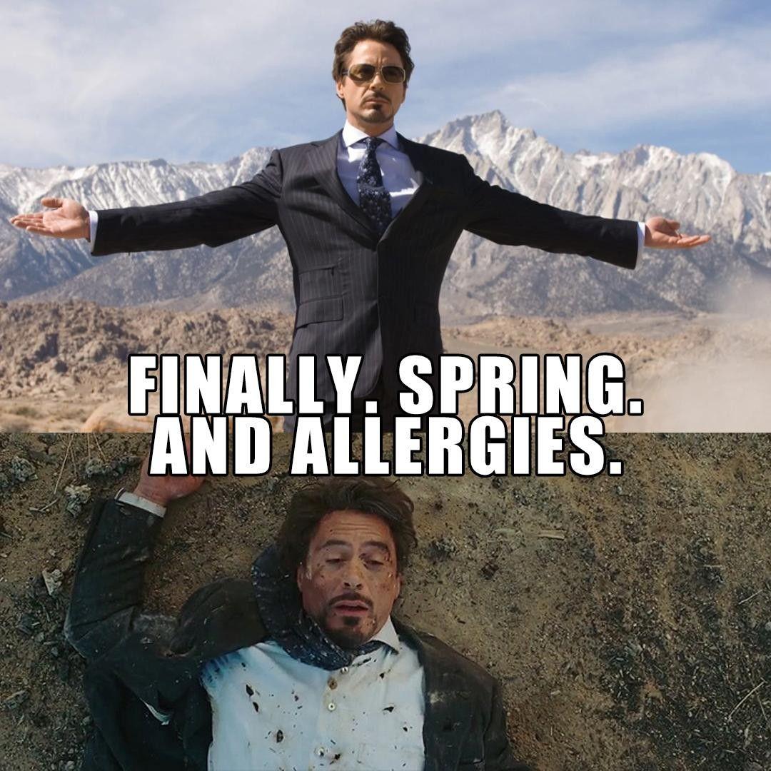 Oh Allergies Friday Humor Funny Memes Puns Jokes