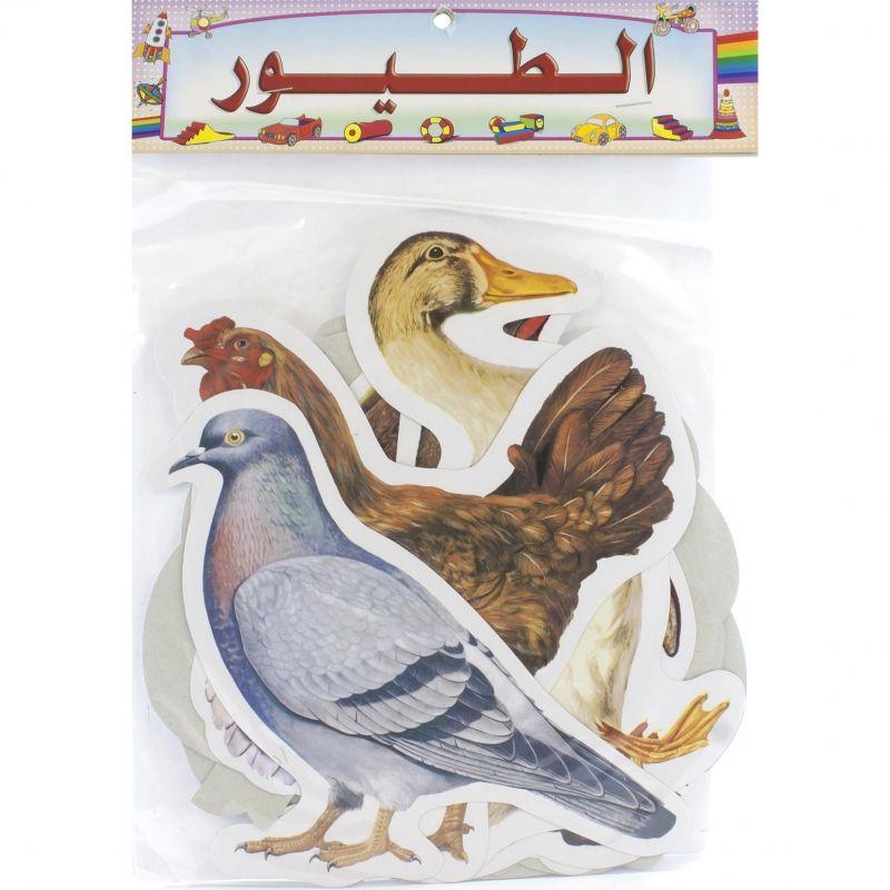 Birds Cutout Arabic Visual Learning Child Development Educational Toys