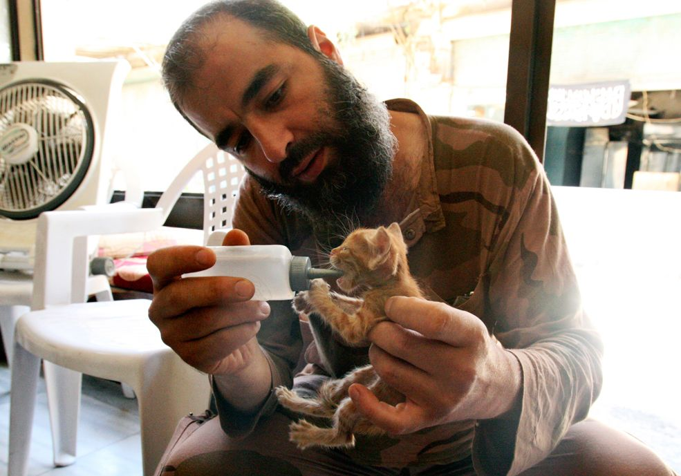 A Free Syrian Army fighter feeds a cat in the al-Jdeideh neighborhood of Aleppo. (REUTERS/Ammar Abdullah) - #CompassionHealsTheHeart