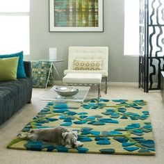 Living Room Turquoise And Lime Green Rug