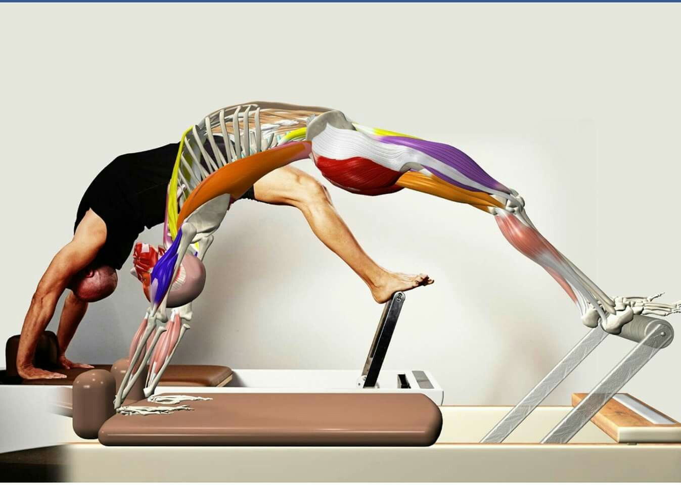 Stretching On The Pilates Reformer Essential Cues Images Is Now Available On Amazon It Is Our Best Material And Pilates Reformer Pilates Teacher Training