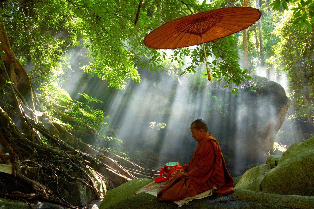 Forest monk. | Buddhist meditation techniques, Buddhist meditation, Zen  meditation