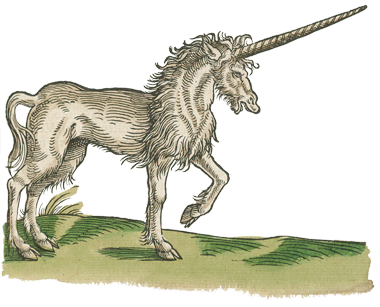 """In Harry Potter, unicorns are considered sacred and pure creatures that should only be used in magic without harming the animal in any way. In the world of science, surgeon Ambroise Paré included unicorns in his writings because of numerous accounts of sightings and the creature's purported medicinal uses. This illustration of an owl from """"Historiae Anumalium"""" (1551) appears in NLM's exhibition, Harry Potter's World: Renaissance Science, Magic, and Medicine."""