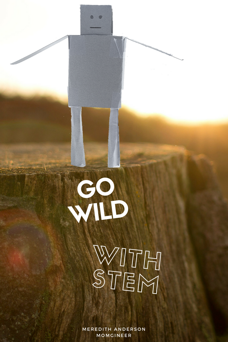 Integrate STEM and literacy with these hands-on challenges for The Wild Robot! Your kids will feel like they are in the story as they follow Roz on her adventures.   Meredith Anderson - Momgineer