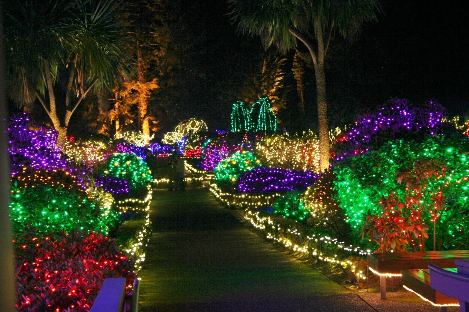 Shore Acres State Park - Coos Bay Oregon - Holiday Lights | Places ...