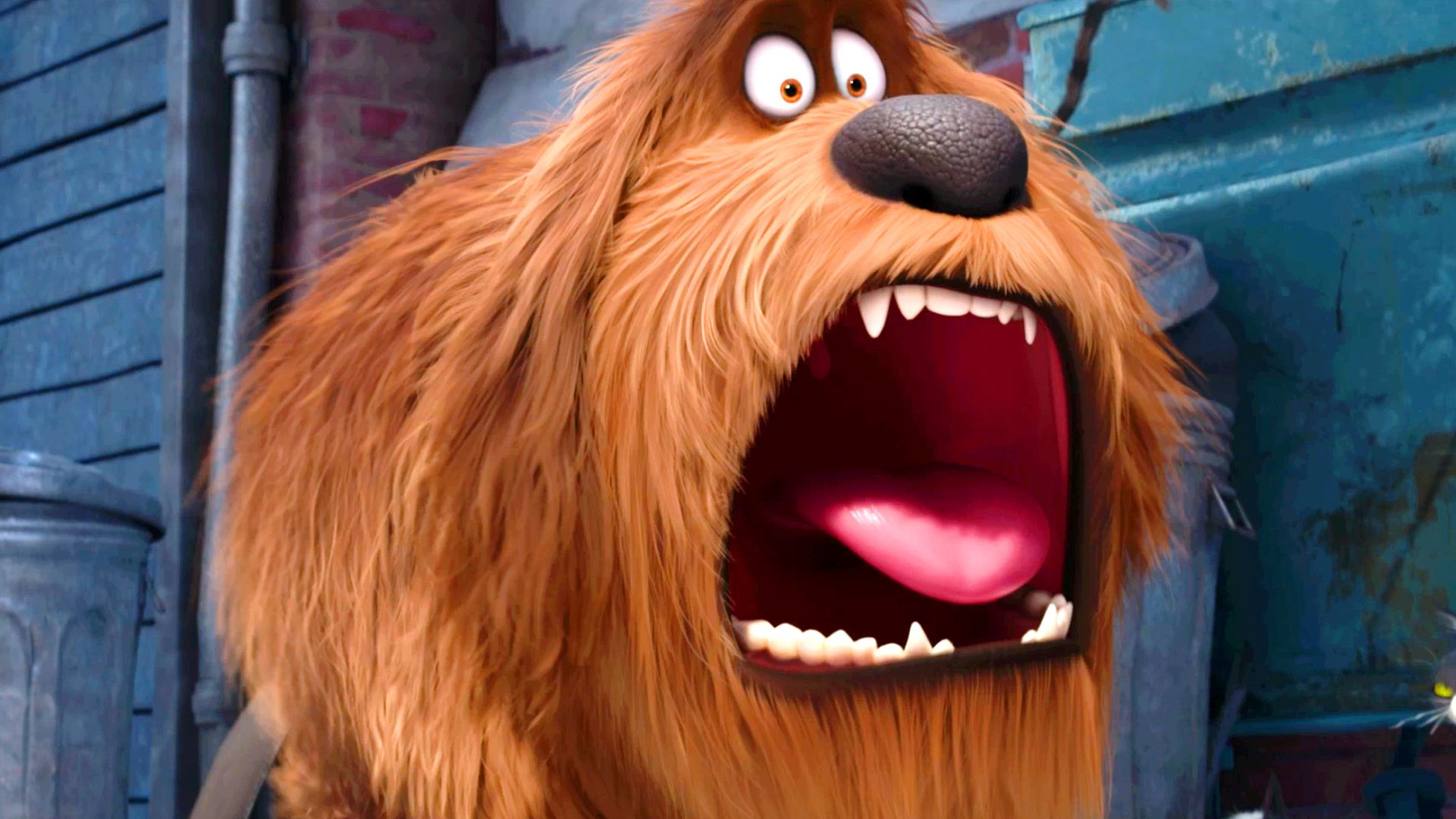 Beware Secret Lives Of Pets Is Not For Kids The Plot Is Intriguing And It Peaked My Interest Too So Wit With Images Secret Life Of Pets Comedy Hd Best