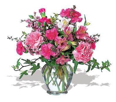 Cheerful Carnations by @1stinflowers.com #birthday #flowers
